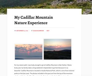 cadillac-mountain copy