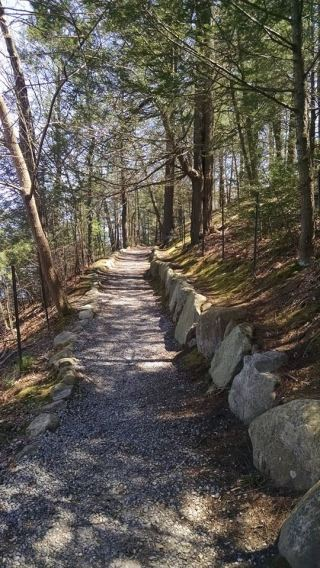 Trail at Walden Pond via the author