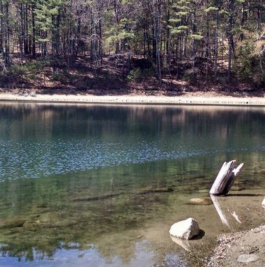 Walden Pond via the author